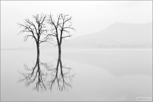 landscape-006